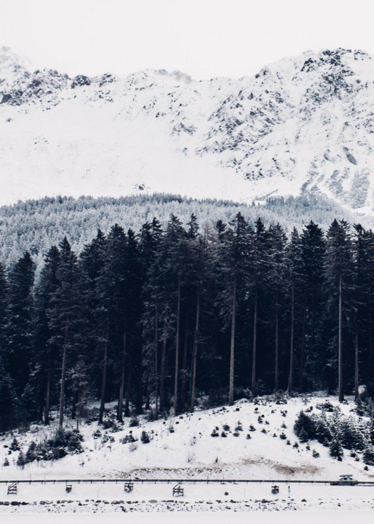 niklaus-laurentino-homepage-2